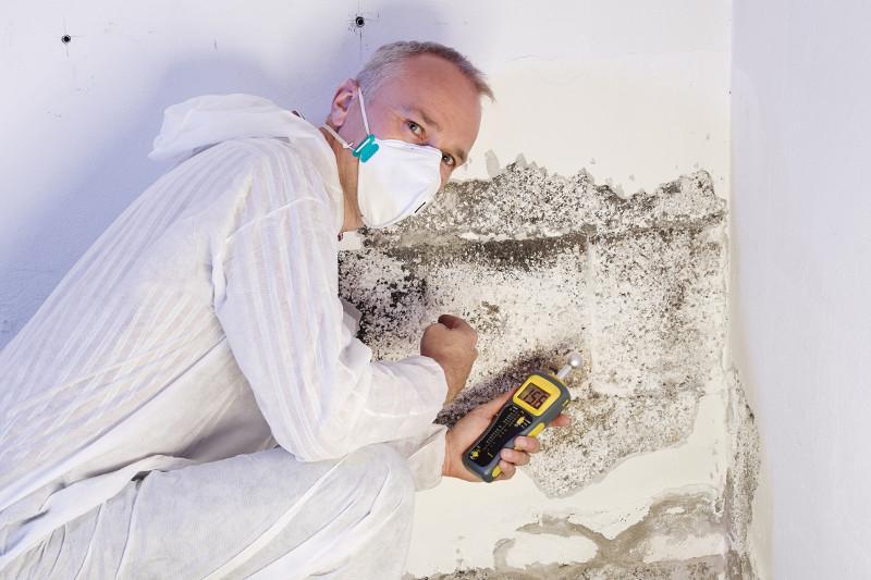 Expert en humidité © Shutterstock